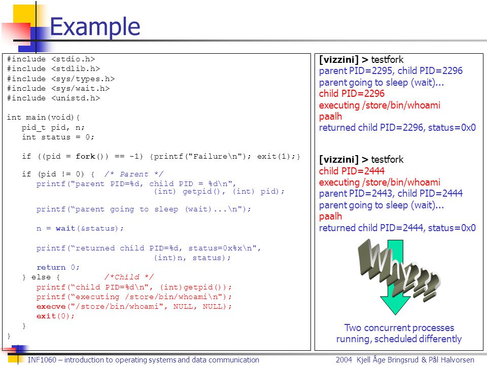 Example Why [vizzini] > testfork parent PID=2295, child PID=2296